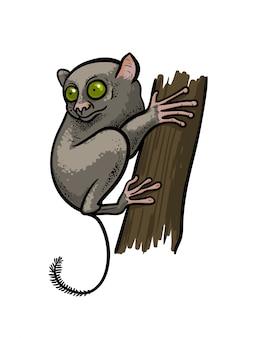 漫画のスタイルで分離されたツリーの上に座ってアジアメガネザルロリス霊長類猿。教育動物学イラスト、塗り絵。