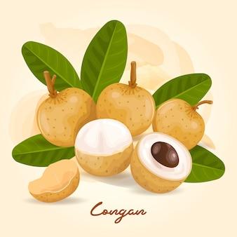 Логан - это фрукт со сладким вкусом