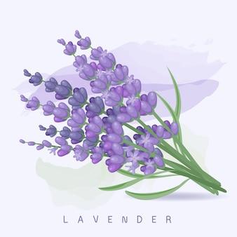 Красивая пастельно-фиолетовая лаванда и акварель