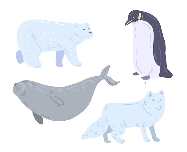 手描きの白いクマ、アシカ、ペンギン、白いオオカミ。極性動物のベクトル図