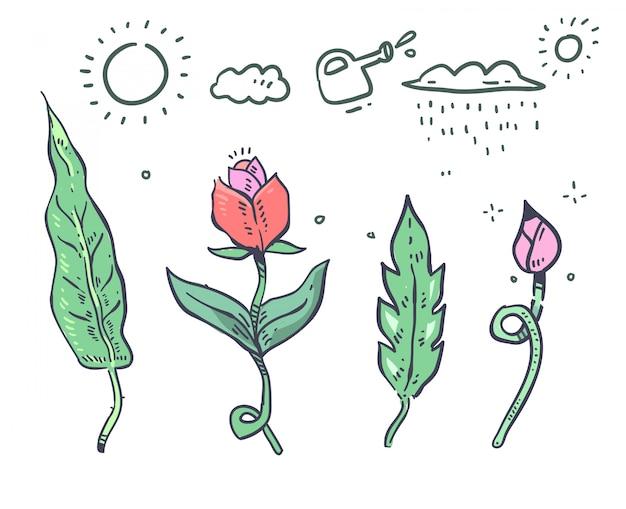 漫画スタイルの植物