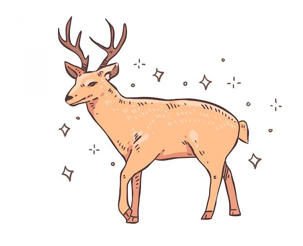 鹿の落書き