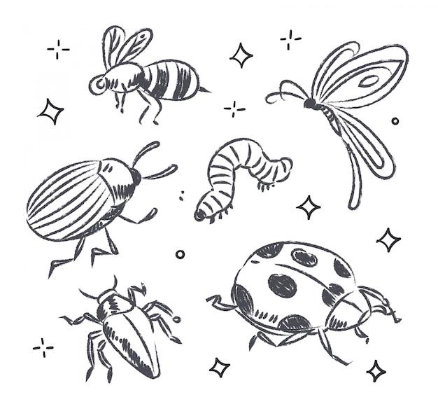 昆虫の落書き