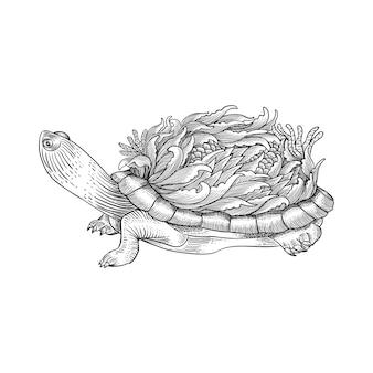 Ручной обращается черепаха орнамент гравировка стиль