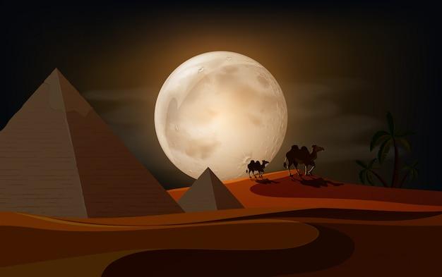 밤에 아름다운 사막 프리미엄 벡터