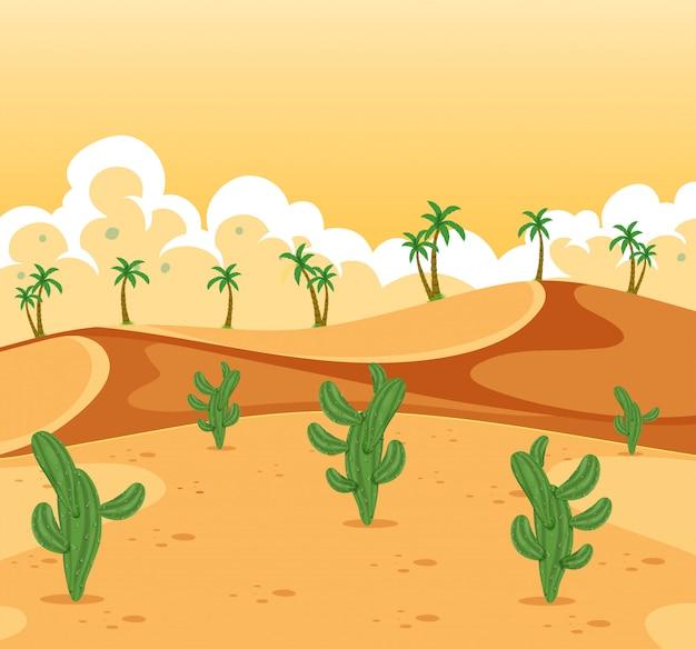 美しい砂漠の風景