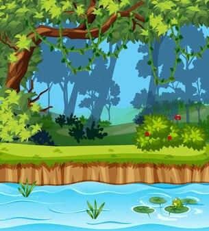 아름다운 정글 풍경