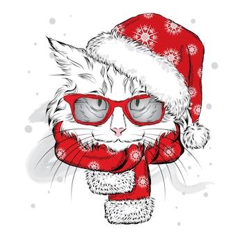 サンタクロースの帽子、眼鏡、スカーフを身に着けた美しい子猫。クリスマスとお正月。