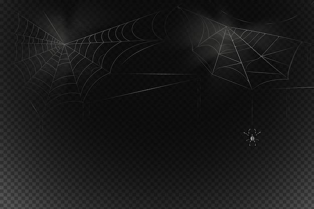 На паутине висит черный паук. страшная паутина символа хэллоуина. реалистичный силуэт.