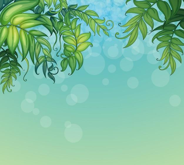 Синий фон с зелеными листовыми растениями