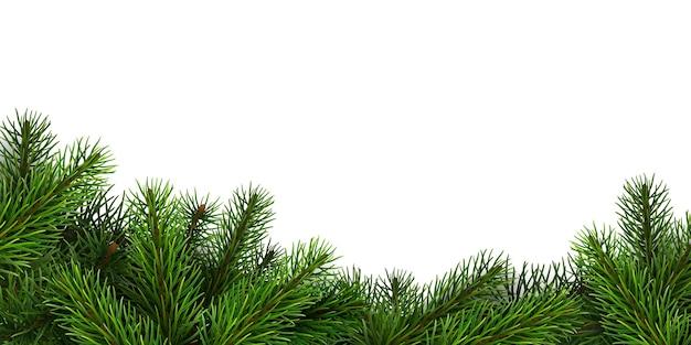 リアルなトウヒの枝の境界線。クリスマスの背景