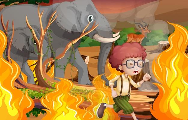 少年と野生の動物は野火から逃げる