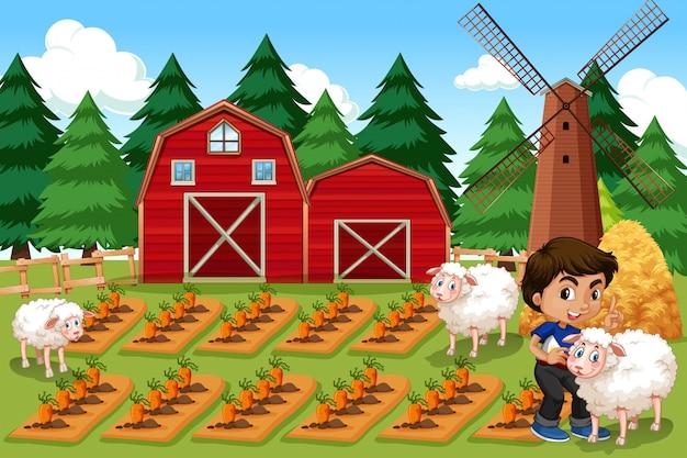 Мальчик на сельскохозяйственных угодьях