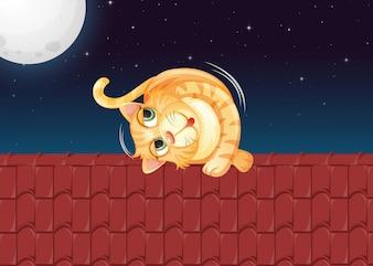 屋根の上を転がる猫