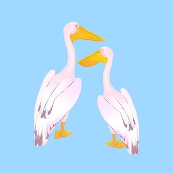 Пара розовых пеликанов. водоплавающие птицы. большая стадная водоплавающая птица с длинным клювом.