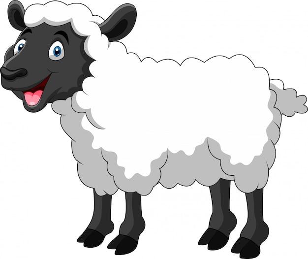 Милый мультфильм овец улыбка