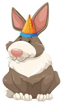 Милый вечеринка кролик