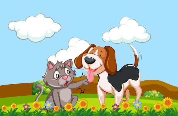 Собака и кошка в саду