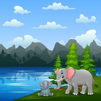 Слон со своим детенышем играет у реки