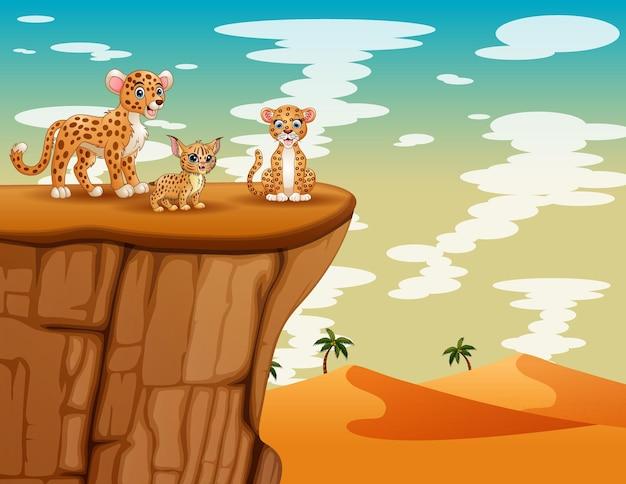 Семья гепарда играет на скале