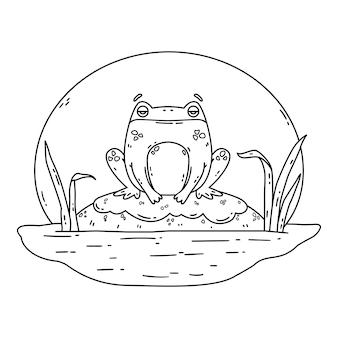 늪의 개구리 바위 위에 앉아 있는 두꺼비