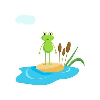 Лягушка стоит на песке. векторные иллюстрации в мультяшном стиле.