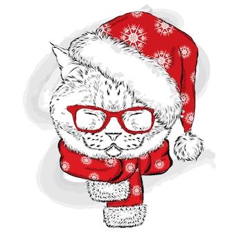 ニット帽とスカーフをしたおかしい猫。はがきやポスターのイラスト、服の印刷。正月とクリスマス、冬。かわいい子猫。