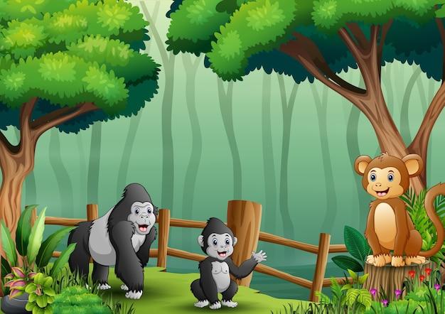 나무 울타리 안에 고릴라와 원숭이