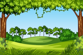 Зеленый ландшафт природы