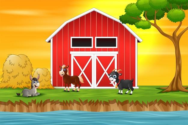 Группа коз на фоне фермы