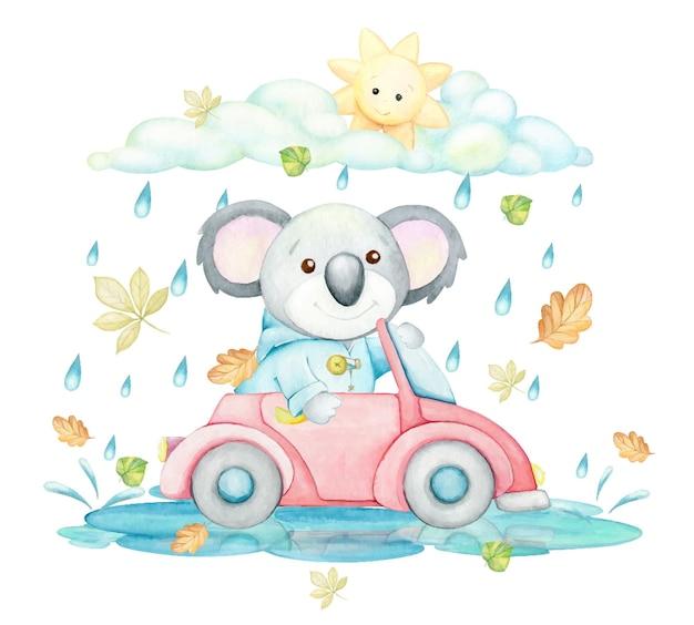 귀여운 동물인 코알라가 단풍으로 둘러싸인 차를 타고 있습니다. 수채화 개념