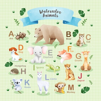 アルファベットa〜mに基づく水彩動物