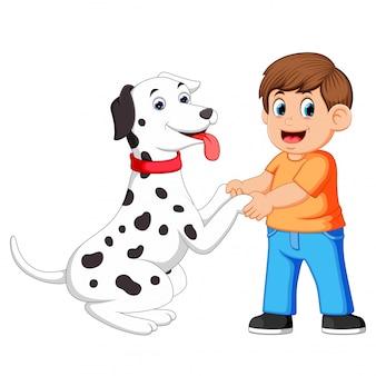 Мужчина пожимает руку собакам далмации