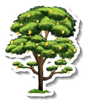 白い背景の上のマンゴーの木のステッカー