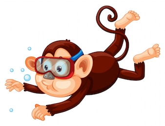 A monkey diving on white background