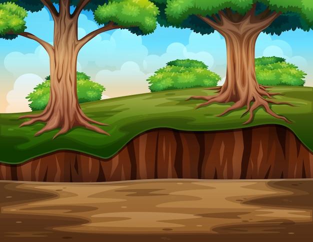 自然のジャングル