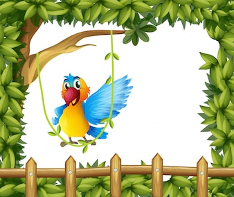 A parrot swinging the vine plant