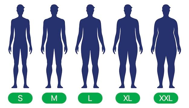 슬림에서 xxl까지 다양한 체형을 가진 사람 표준 체형 벡터 차트