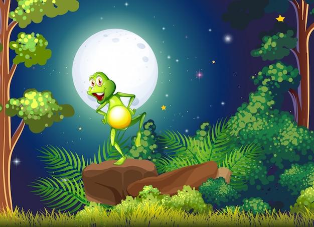 Игривая лягушка стоит над скалой в лесу