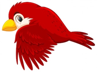 A red bird flying