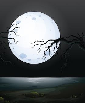 A Scary Dark Night Scene