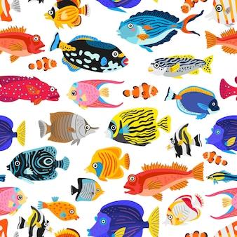 エキゾチックな熱帯魚のシームレスパターン