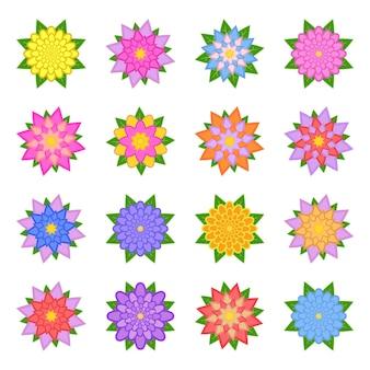 美しい色とりどりの花のセット。