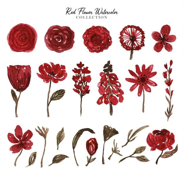 아름다운 자유형 붉은 꽃 수채화 세트