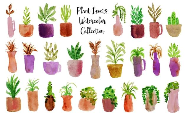 아름다운 냄비와 식물 수채화 세트