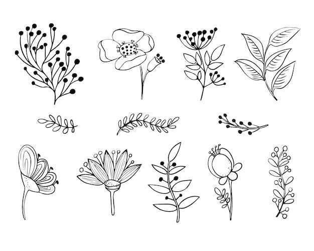 꽃과 풀밭의 식물 요소 세트