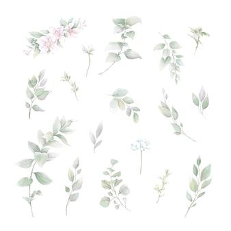 Набор букетов из нежных роз и орхидей. акварельная иллюстрация.
