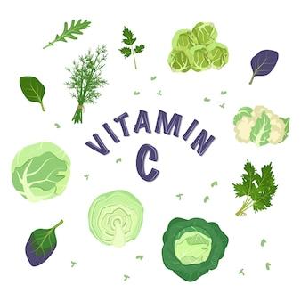 Набор разных видов капусты и зелени для диеты. источник витамина с. зеленые ингредиенты для вегетарианских блюд и здорового образа жизни. пищевые иконки. векторная иллюстрация