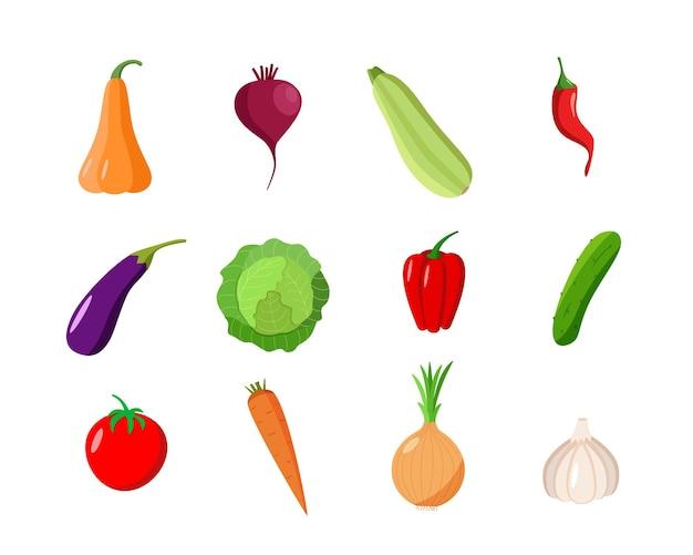 Набор разных овощей. векторная иллюстрация сезонного осеннего урожая.