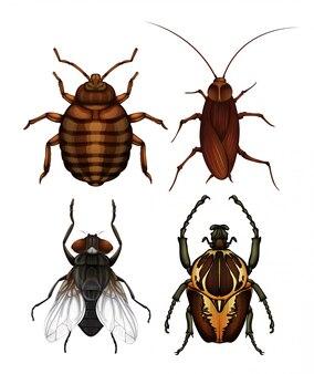 질병 곤충 세트